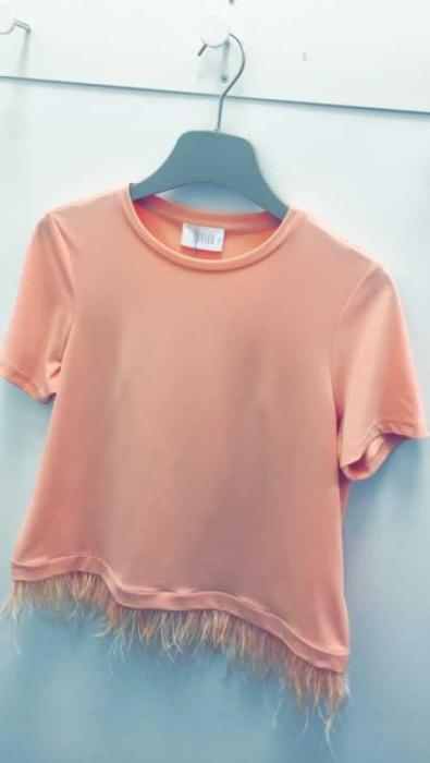 Dunnes Stores Peach Feather top £25
